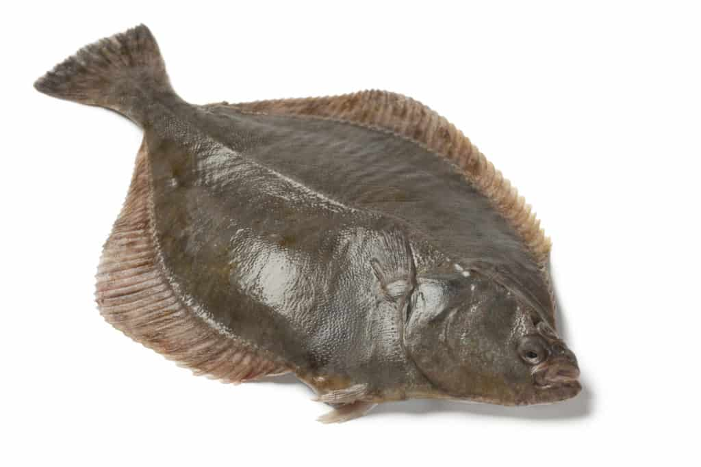 Is Flounder Fish Healthy to Eat?