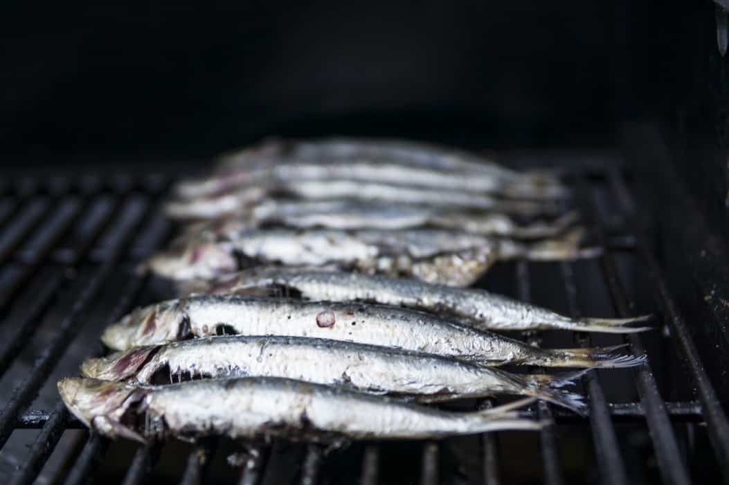 Sardines: It is Suitable for Health and How?